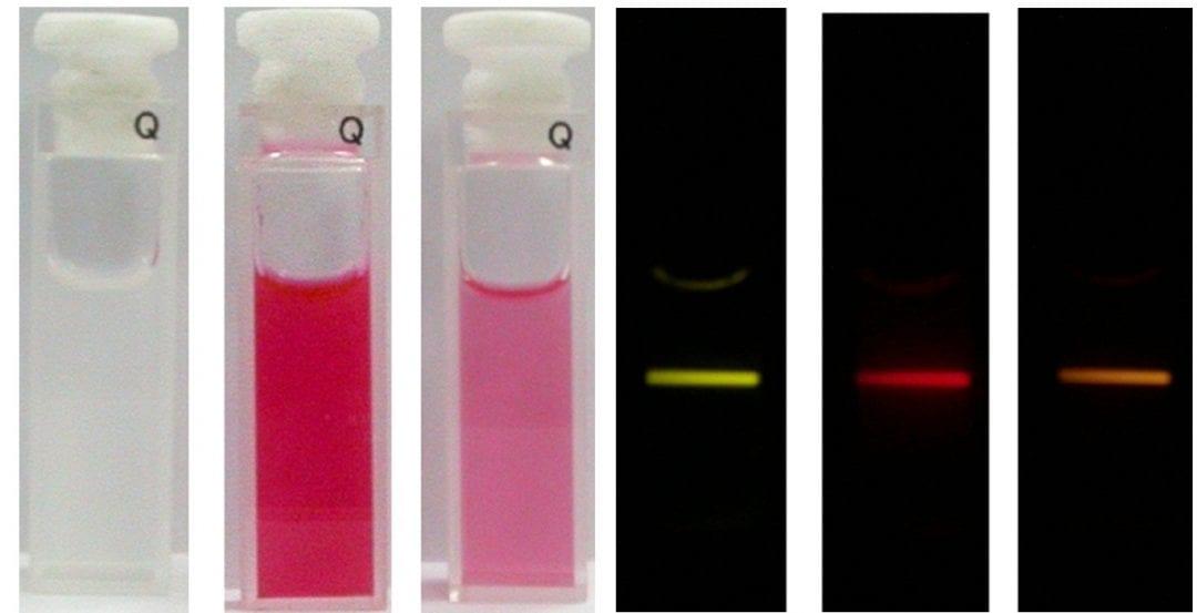 Detecting Poison: New Probe Developed for Cyanide Sensing