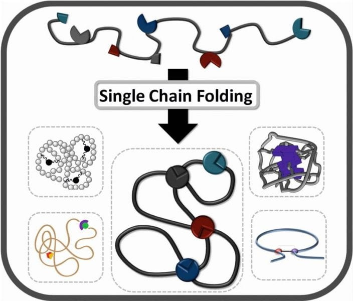 single chain folding of polymers