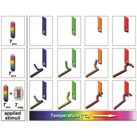Taking Shape: Metamorphic Nanocomposites