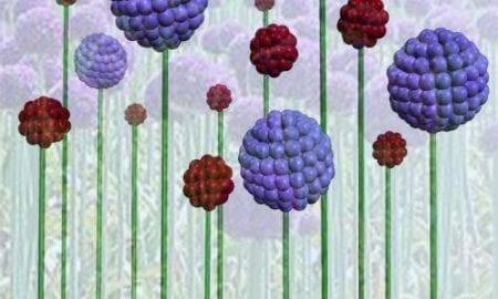 Nanocontrol using peptides