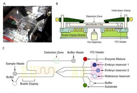 Enhancing fertility by microfluidics and biophotonics