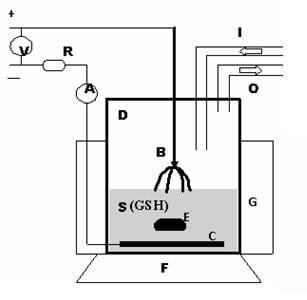 Monitored gluthathion oxidation in argon plasma