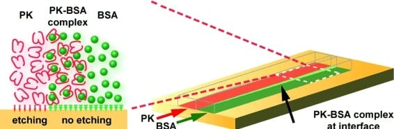 Enzymes Dig Channels: Bio-Etching for Nanostructured Surfaces