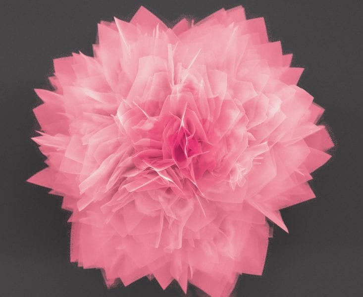 "The GeS ""nanoflowers"" have petals only 20-30 nanometers thick, and provide a large surface area in a small amount of space."