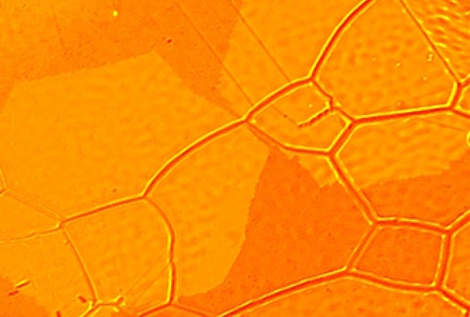 Growing graphene better for future electronics