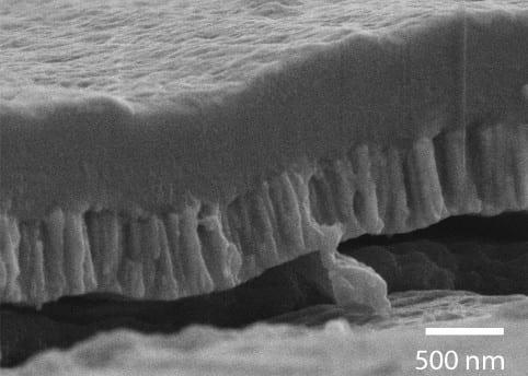 Improving implant bone bonding with bioactive film coating
