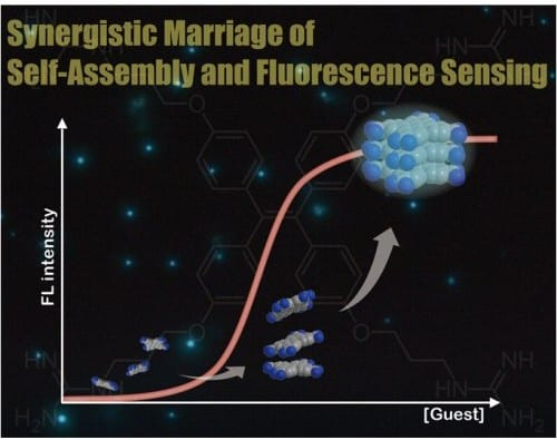 Synergistic marriage of fluorescence sensing and molecular self-assembly