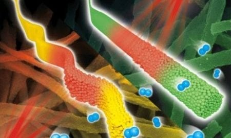 Special Issue on Functional Nanofibers