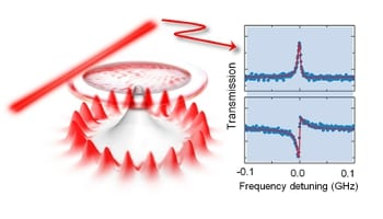 Tunnelling-induced transparency in a chaotic microcavity