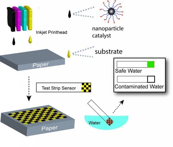 Funding for nanotech water-borne disease research