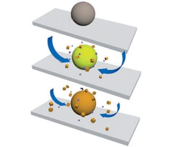 Polymer gel continuously responds to fleeting stimuli