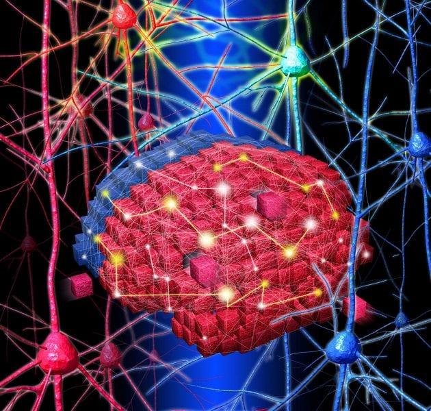 Brain Blocks: Fabricating 3D Neural Networks In Vitro