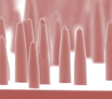 Cover story: diamond nanoneedle array