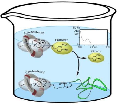 Cholesterol-conjugated (bio)polymers via UV-vis traceable chemistry