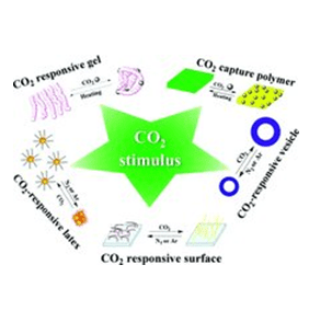 Carbon dioxide responsive polymers