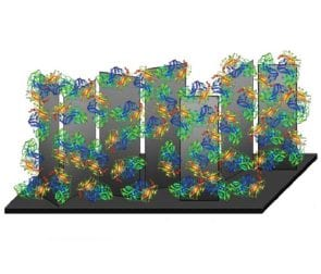 Quick as you like: Carbon nanosheets allow direct electron transfer in biofuel cells
