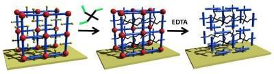 Tailor-made polymer gels for biology and medicine