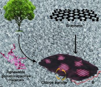 New lig in town: Renewable hybrid electrode based on lignin confined on reduced graphene oxide