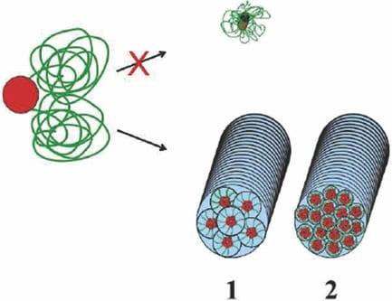 Building an extracellular matrix – Fiber by fiber