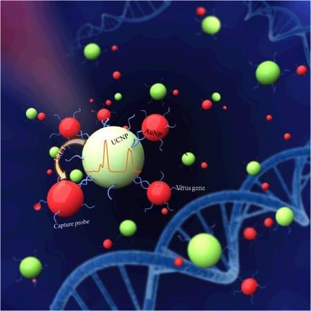 Upconversion nanoparticles as biosensors