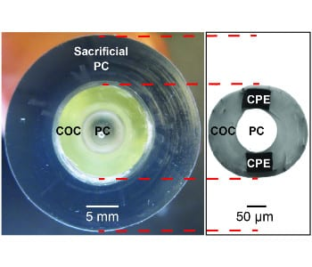Flexible probes for spinal cord integration