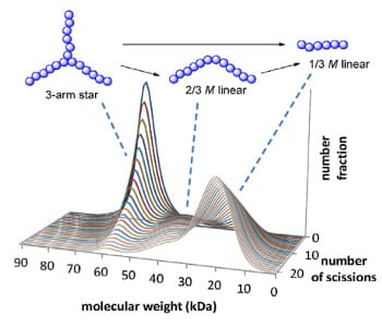 Modeling the degradation of star polymers