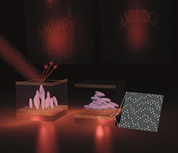 Optical antennas for switchable holographic smart pixels