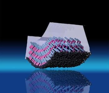 Flexible Bragg Reflectors for Optical Applications