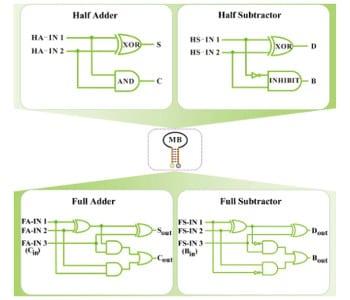Molecular arithmetic operations on a single DNA platform