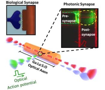 Neurophotonics: In Pursuit of an Inorganic Brain