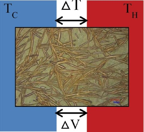 Polymer Thermoelectrics