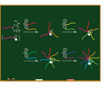First precise 9-arm 9-component star polymer