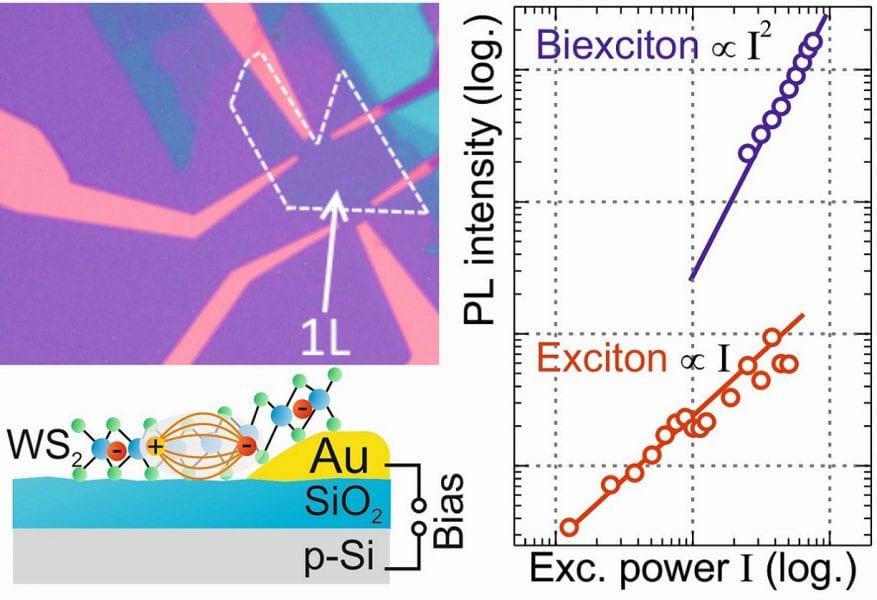 Optical spectroscopy reveals biexcitons in monolayer tungstenite