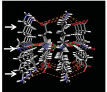 Understanding higher-ordered structures in polypeptides