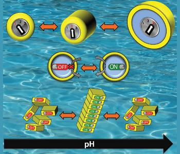 Autonomous control with pH-responsive materials