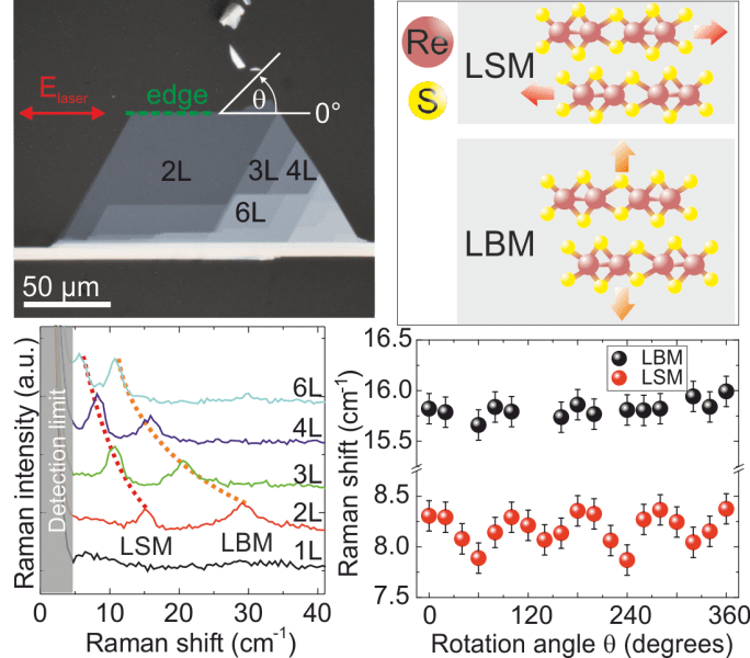 Anisotropic interlayer coupling in atomically thin ReS2