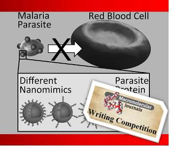 Influencing the antimalarial activity of polymer-based nanomimics