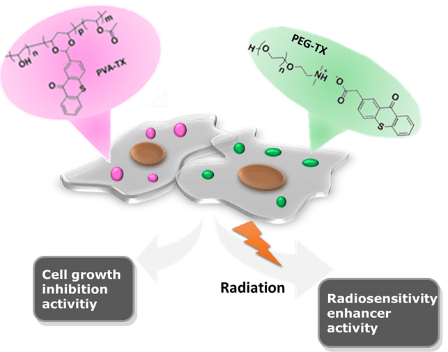 Targeting cancer with polymeric thioxanthones