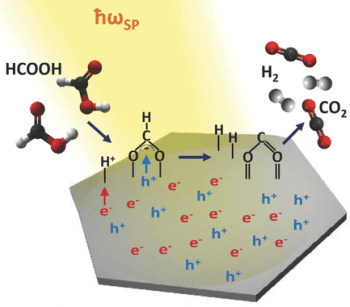Plasmon-mediated photocatalysis – Pd nanoparticles in a double role