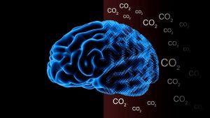 ozin_co2-on-the-brain-v3img1-docx