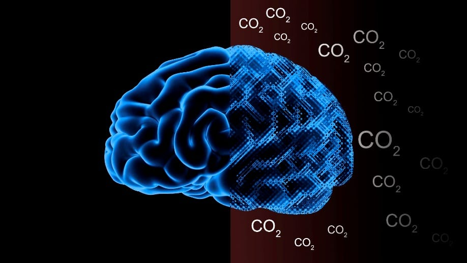 CO2 on the Brain and the Brain on CO2