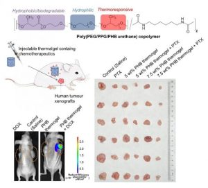 injectable-hydrogels-for-chemotherapy