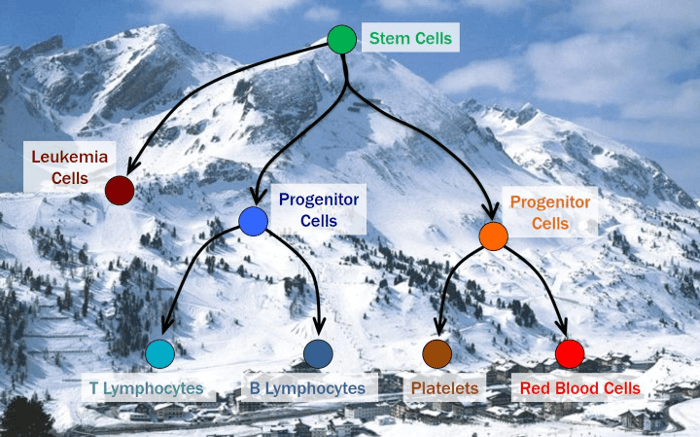 Beyond the DNA — comprehensive map of the human epigenome completed