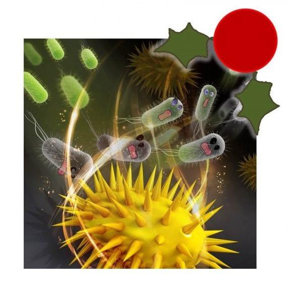 antibacterials