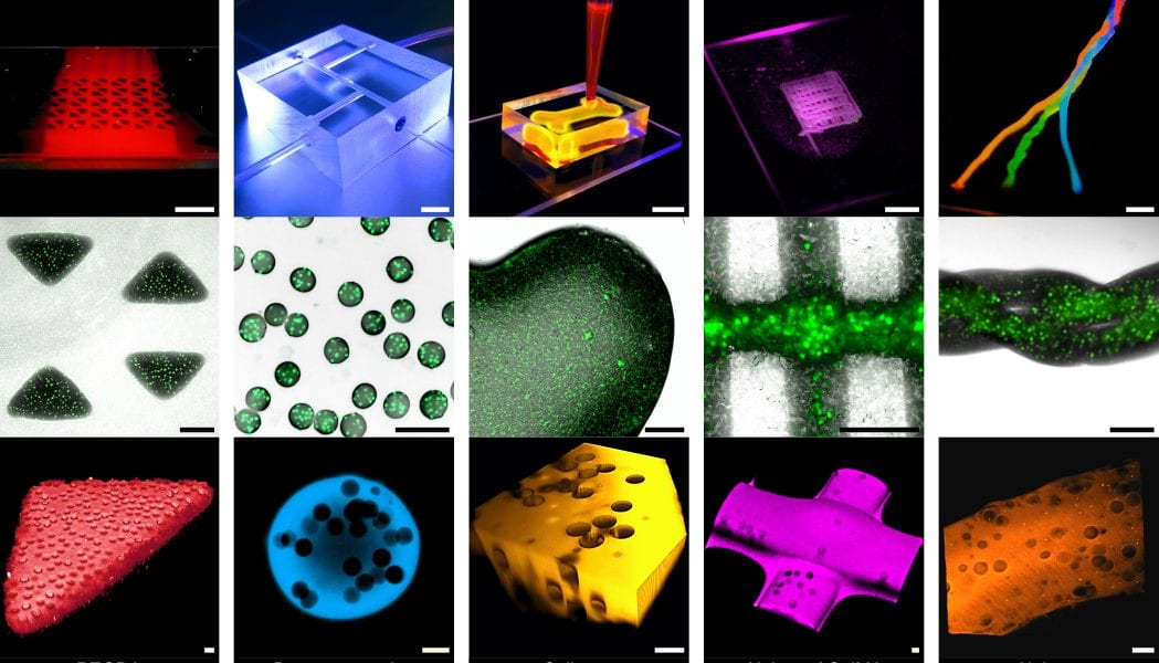 Tiny Bricks of Single Cells for 3D Synthetic Tissue