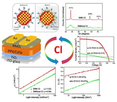 The Functions of Chlorine in Aqueous-Processed High-Performance Polymer/CdTe Hybrid Solar Cells