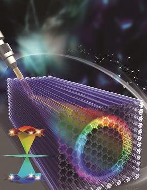 Super-Honeycomb Lattice – a Hybrid Fermionic and Bosonic System