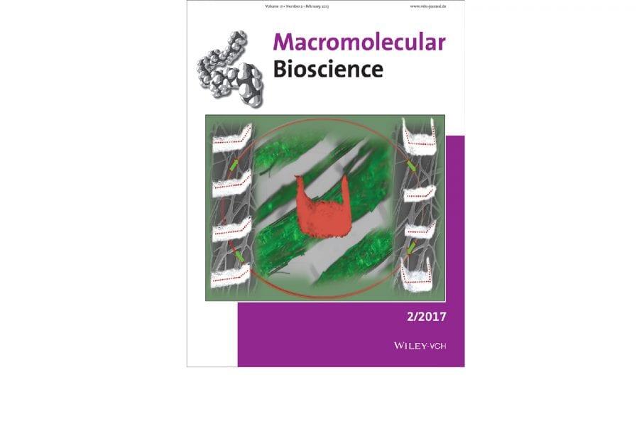 Bioactive Shape Memory Mats