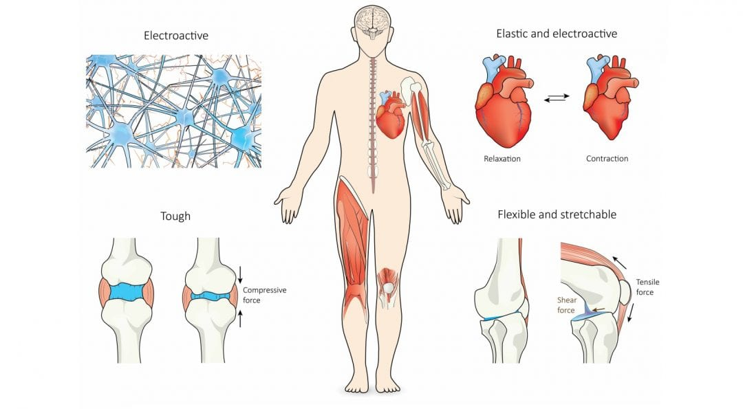 Nanocomposite Hydrogels for Load-bearing and Electroactive Tissue Replacement