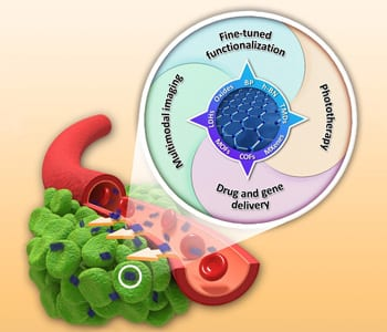 2D Nanomaterials for Cancer Therapeutic Platforms